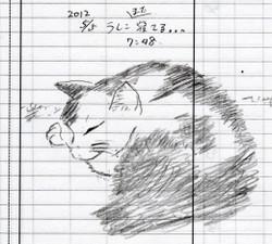 Ushiko004_20120505_2