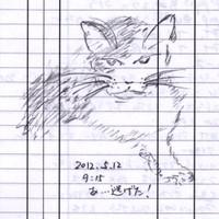 Ushiko005_20120512
