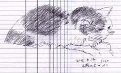 Ushiko008_20120616