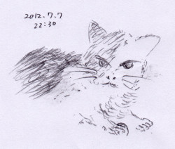 Ushiko009_20120707